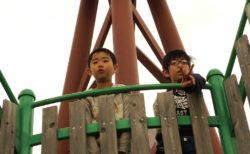 3月16日 プリムローズとカマキリ公園と虹♫
