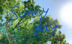 風の強い土曜日~